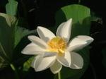 200608takada_007