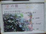 2006nzkaoutuwatenjibinokurasi_028